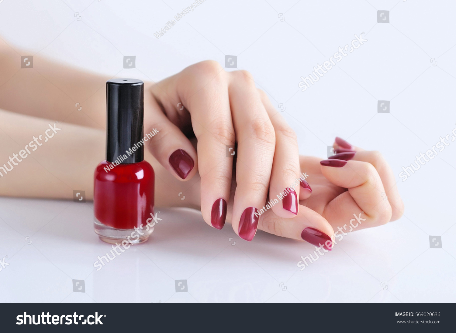 Hands Woman Dark Red Manicure Nail Stock Photo (Royalty Free ...