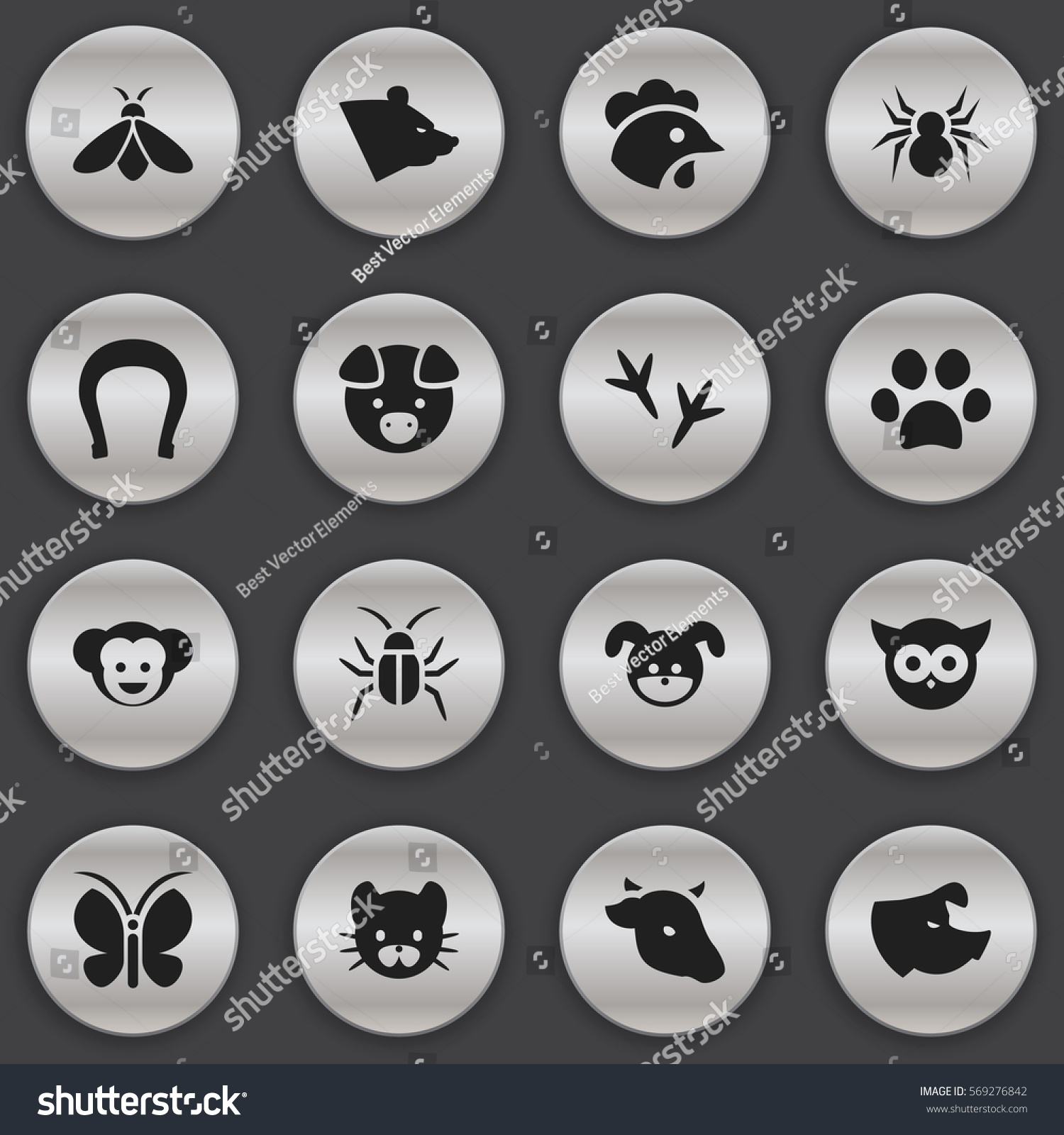 Set 16 Editable Zoology Icons Includes Stock Vector ...