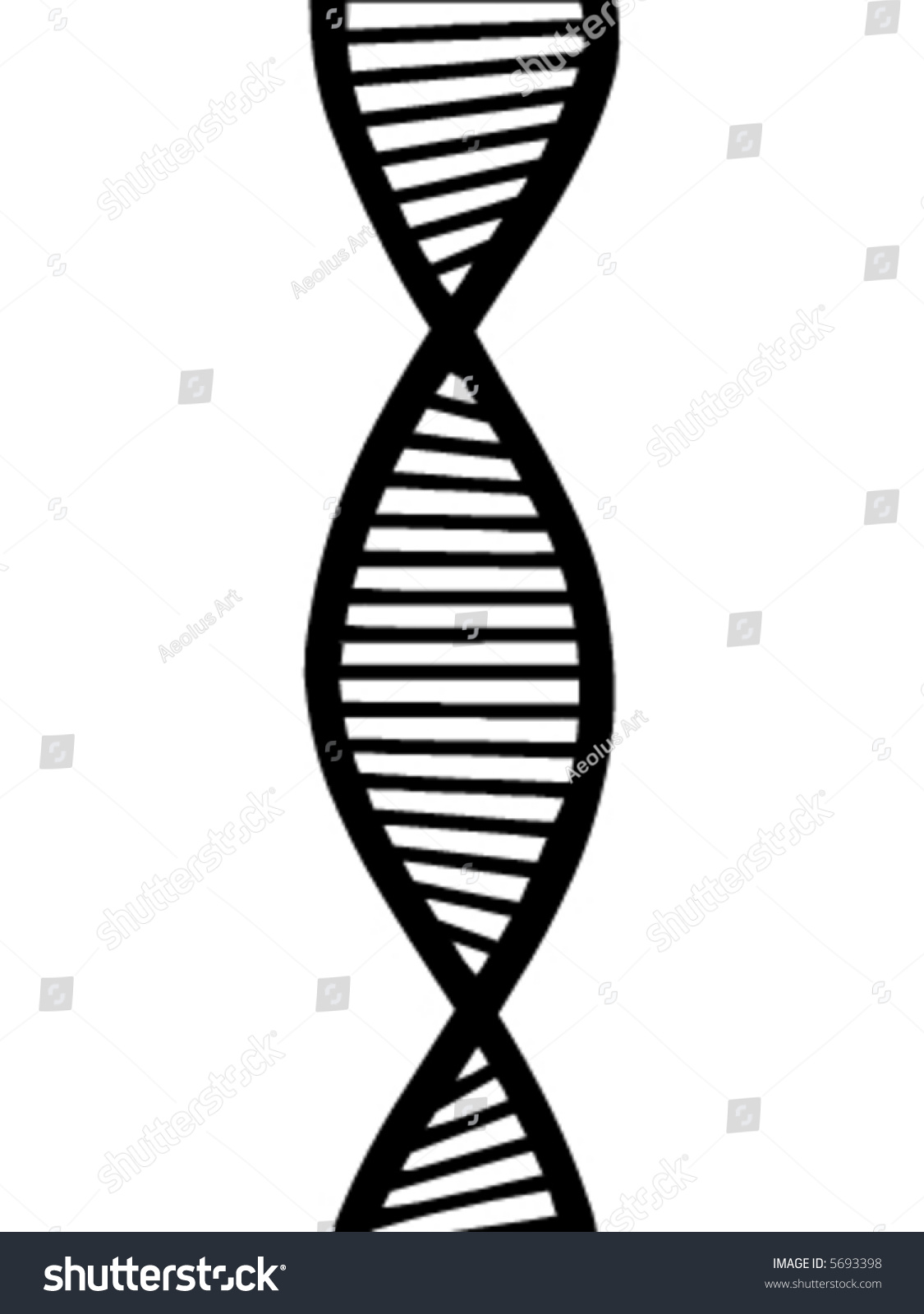 What is a vector genetics