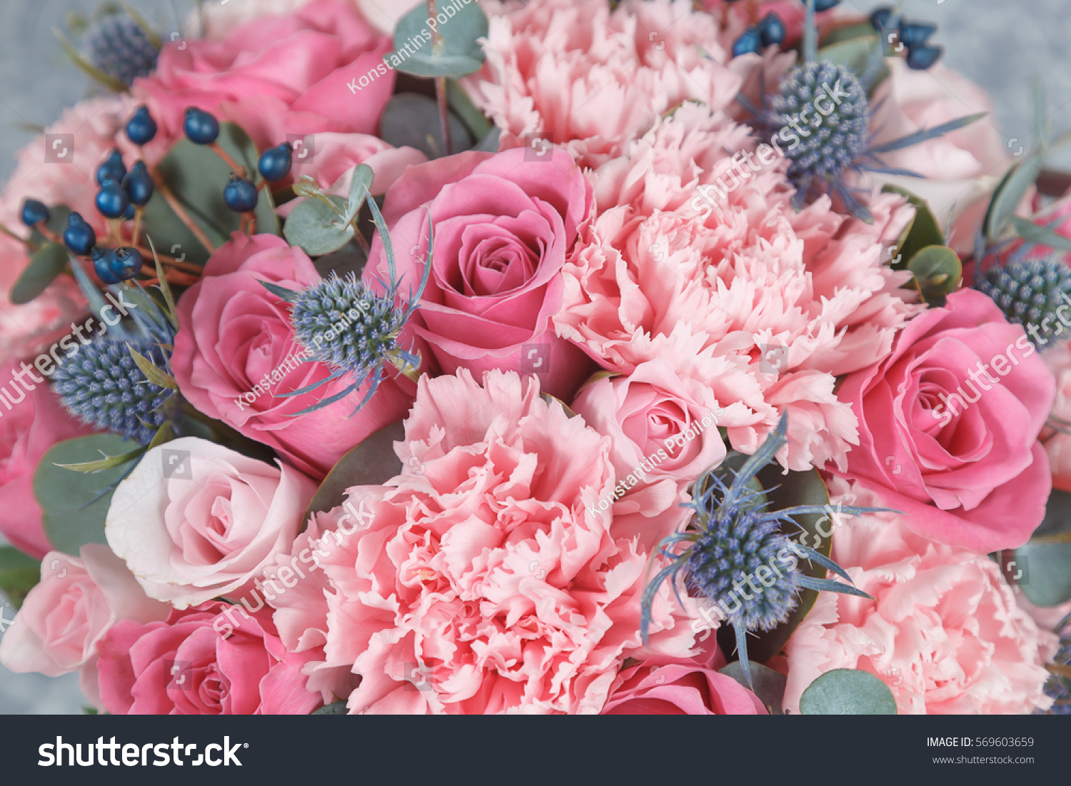 Pink Blue Flowers Background Stock Photo Edit Now 569603659