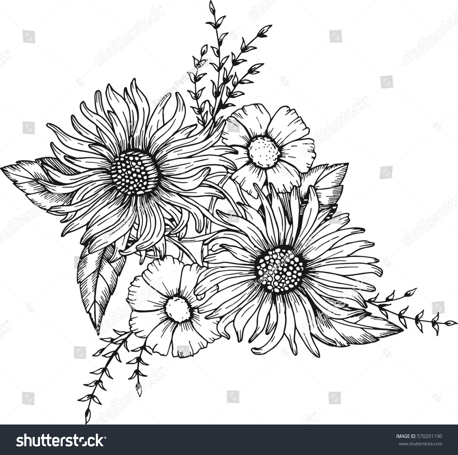 hand drawn flowers anti stress coloring stock vector 570201190