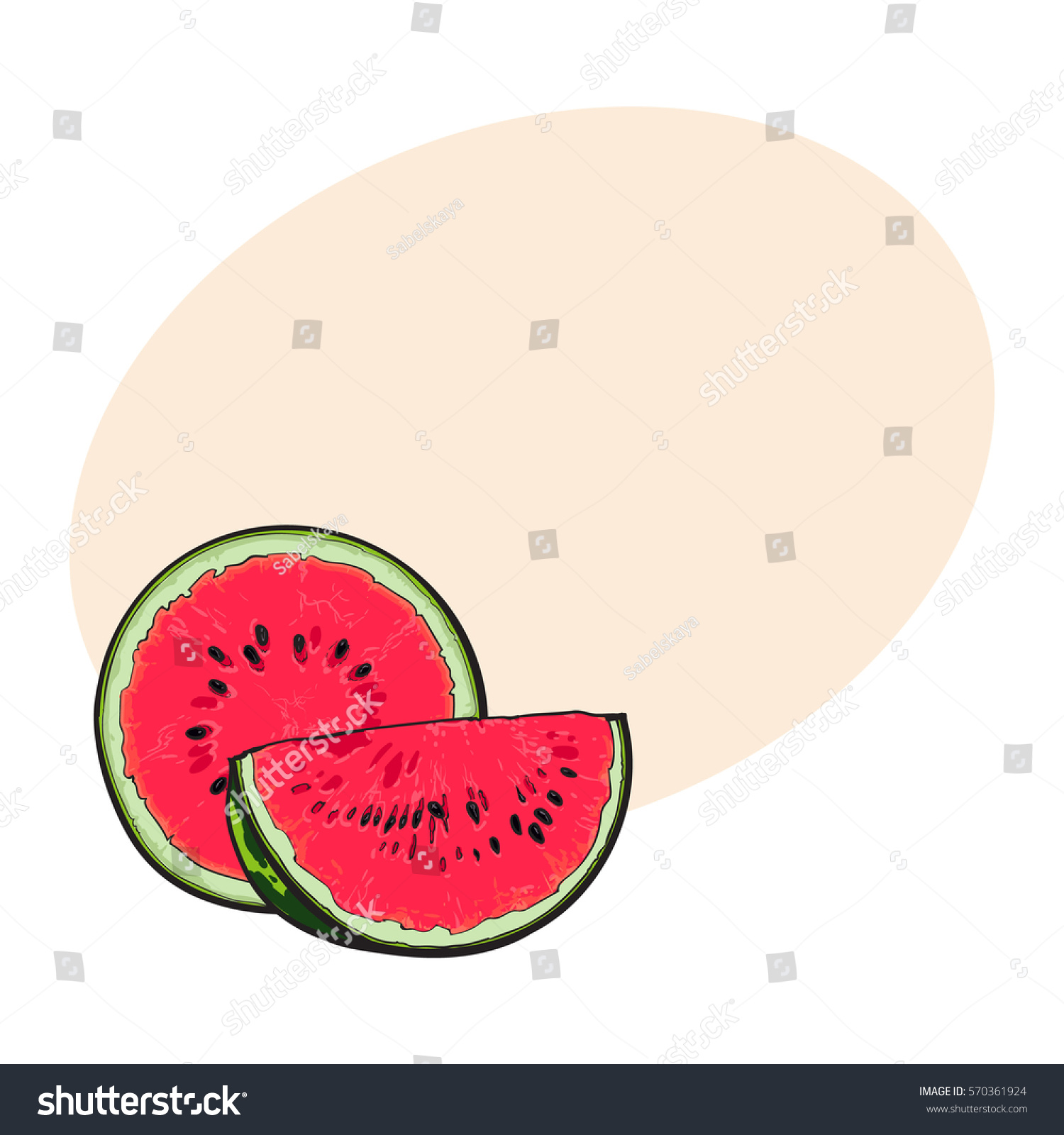 Half quarter ripe red watermelon black stock vector royalty