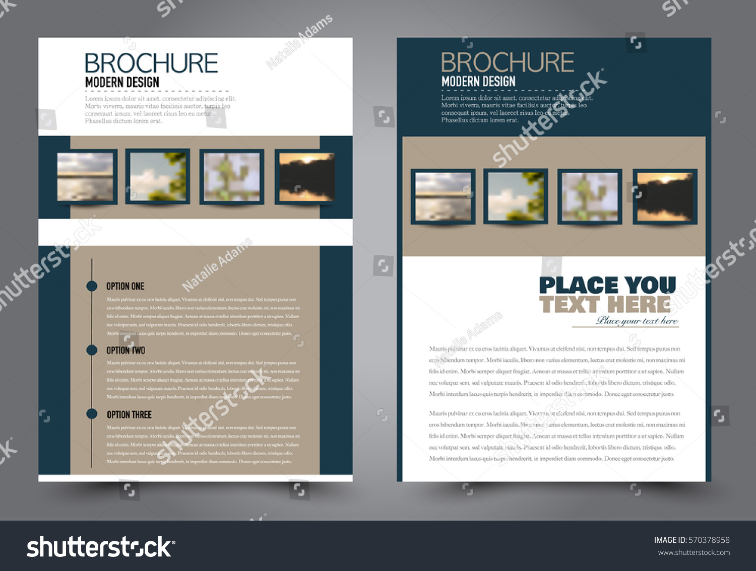 Business Brochure Template Flyer Design Annual Stock Vector Royalty