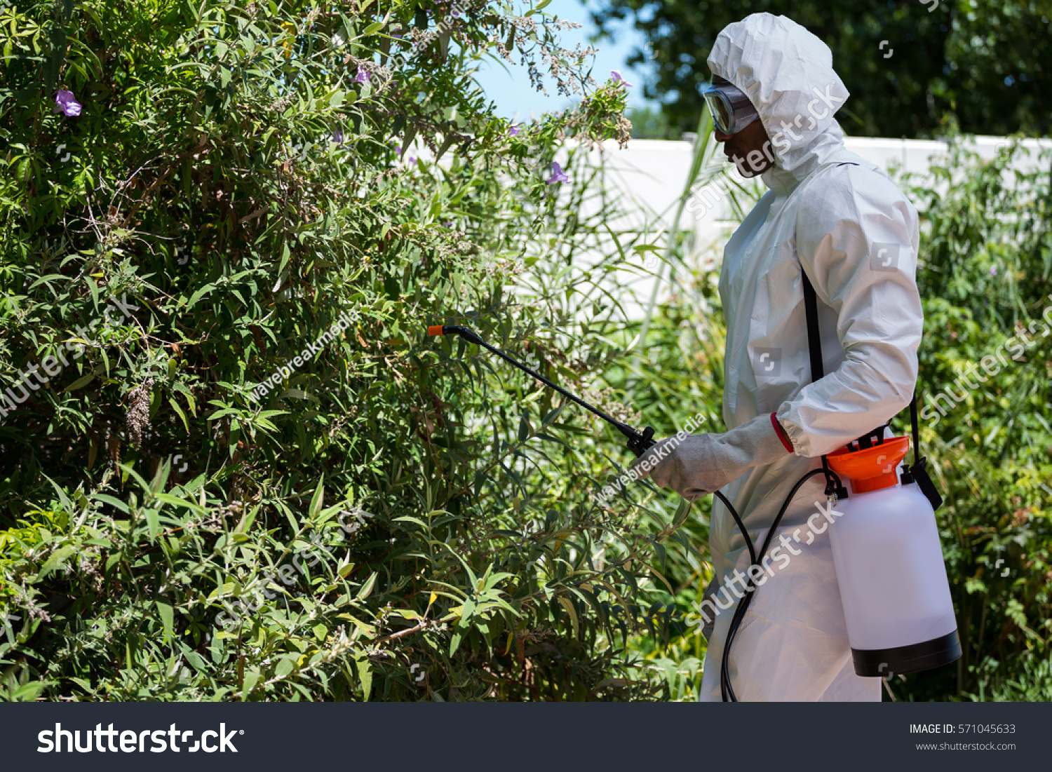 Delicieux Man Doing Pest Control In The Backyard