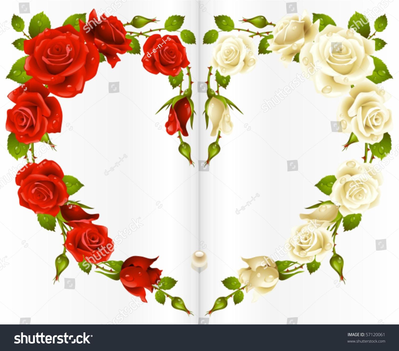 Red White Rose Frame Shape Heart Stock Vector 57120061