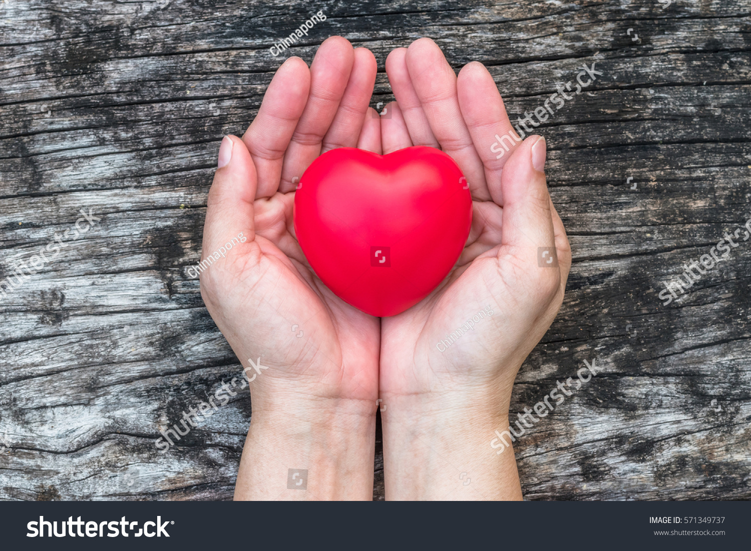 south heart divorced singles dating site Connecting christians is not an internet dating site this service operates very differently to internet dating sites and thus cannot be compared to such services although we do operate a website, you would not be joining or subscribing to a site per se.