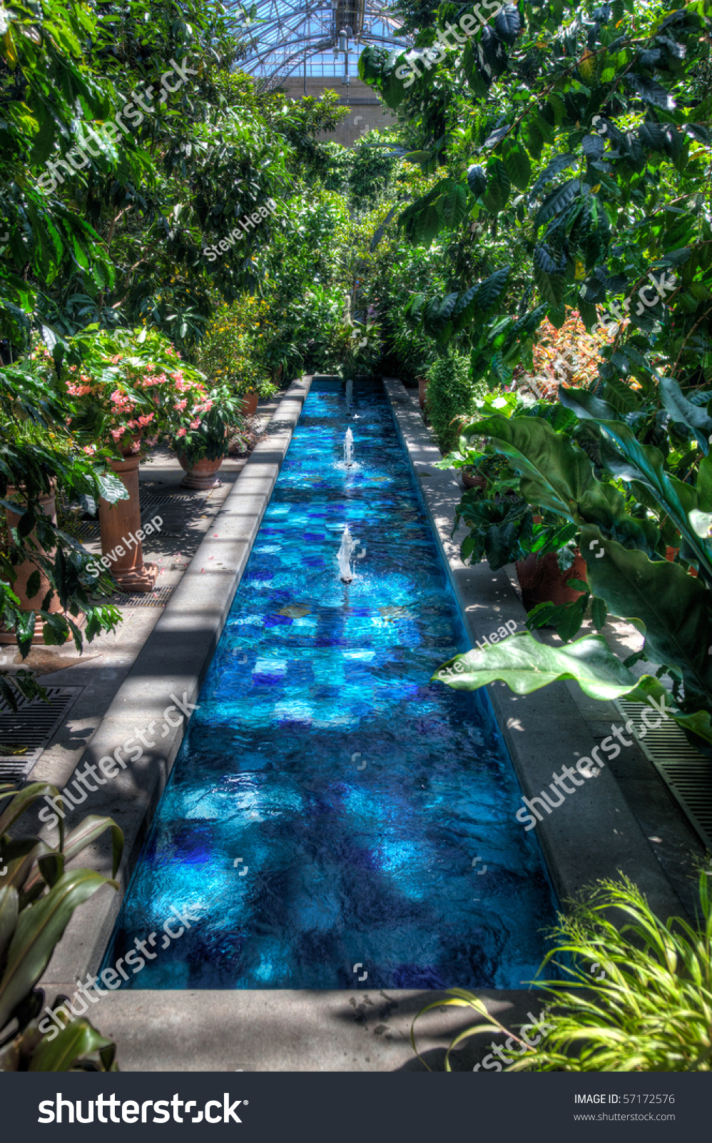 Blue Pool Among Bright Plants And Flowers Taken In Hdr In A Greenhouse Or Conservatory Stock