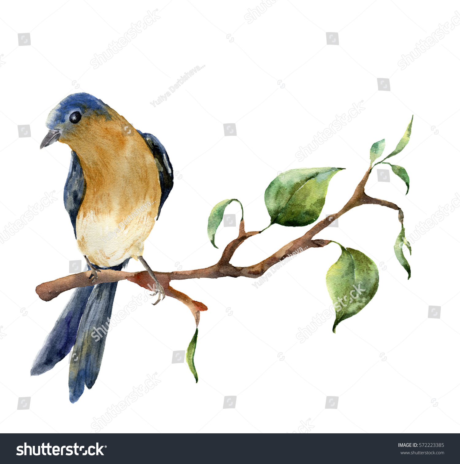 Watercolor Bird Sitting On Tree Branch Ilustración de stock572223385 ...