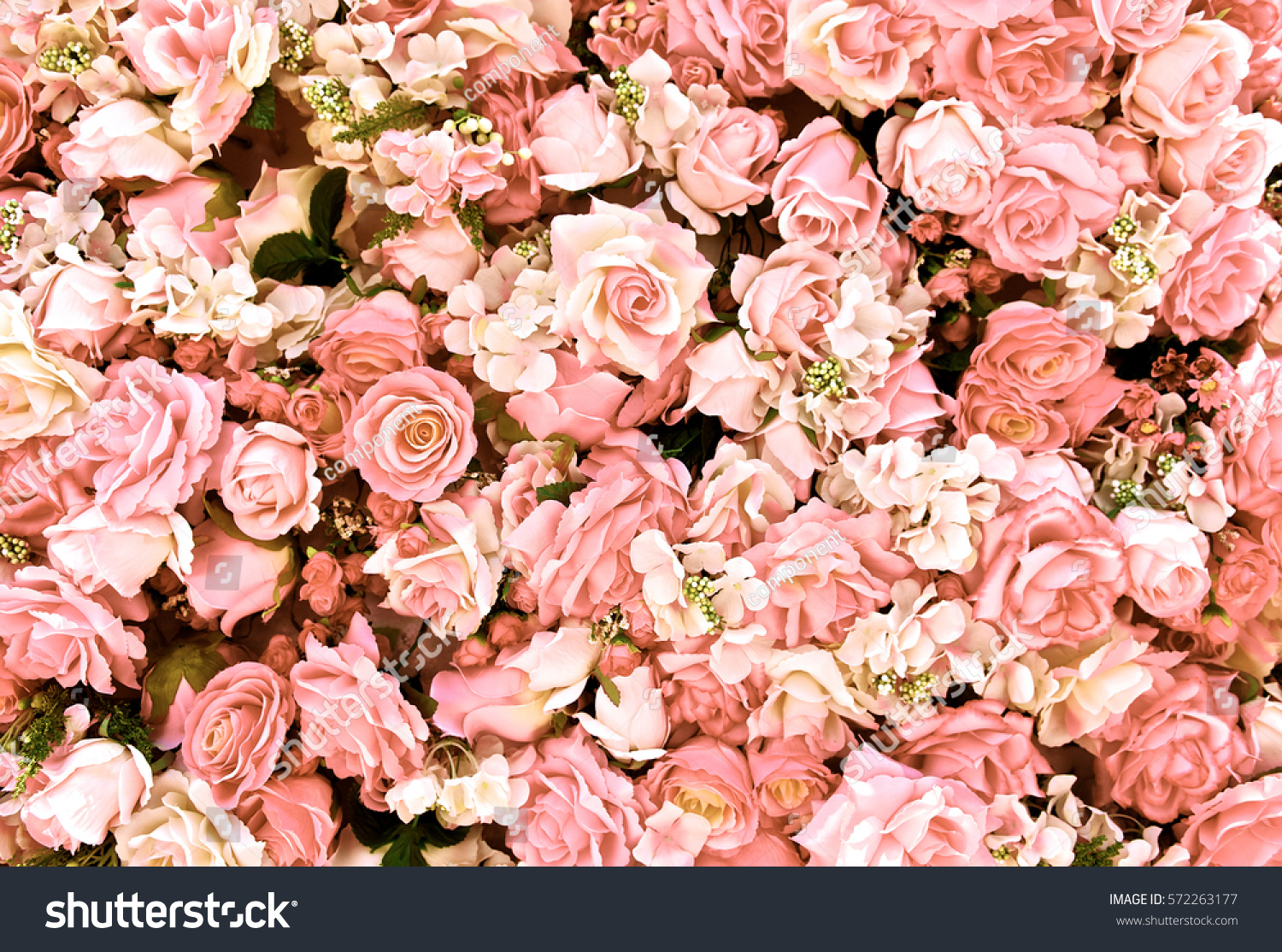 Pink Rose Flowers Bouquet Background Valentines Stock Photo (Royalty ...