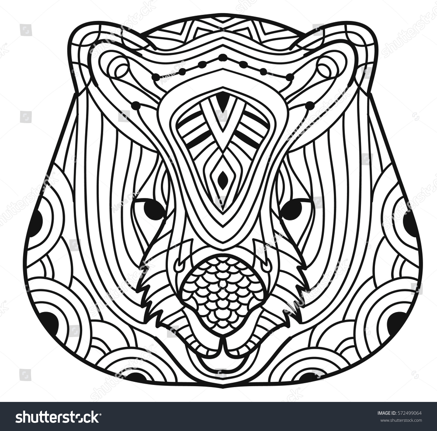 Animals Of Australia Wombat Cute Line Drawing A Head With