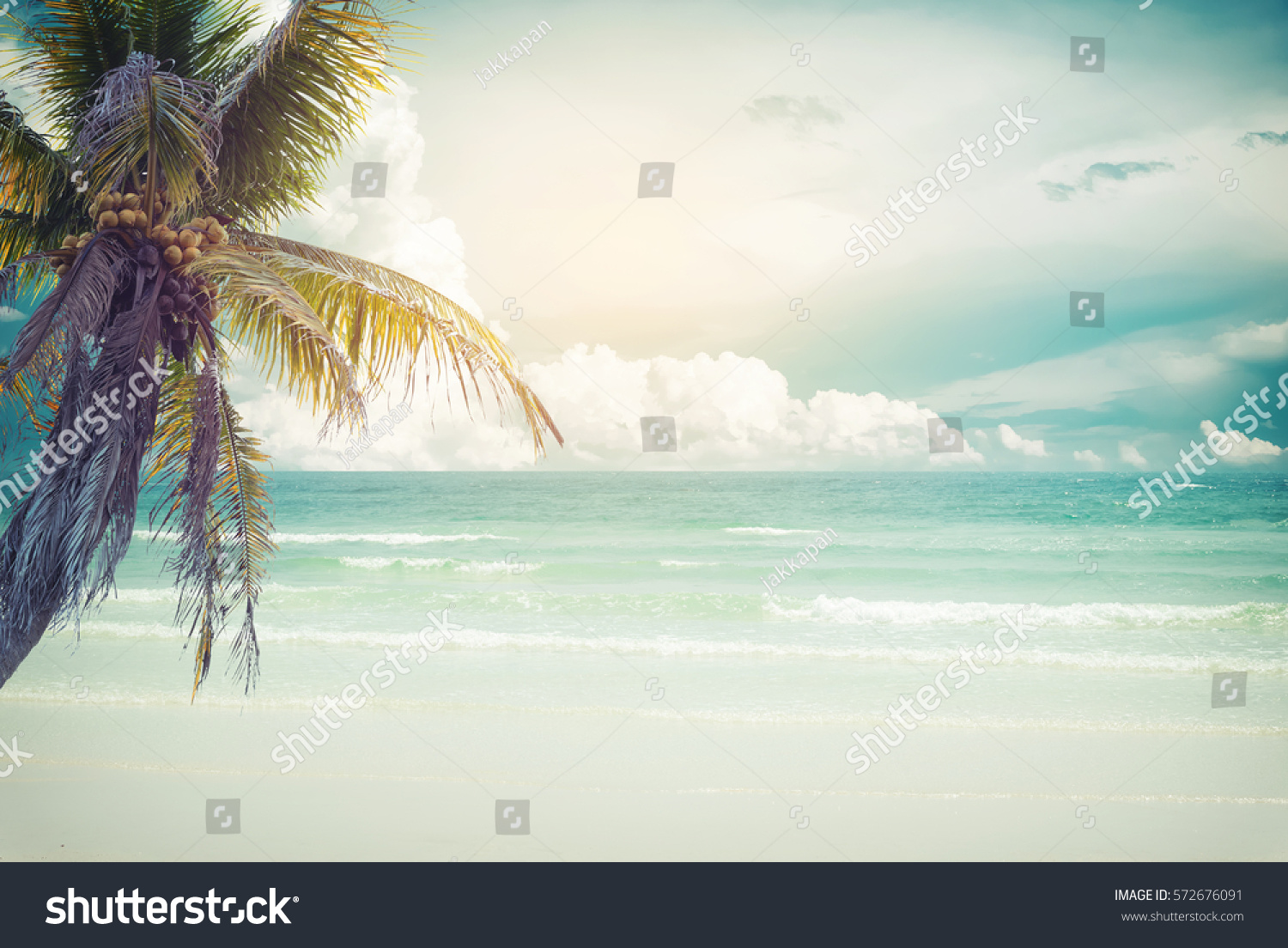 Vintage Tropical Beach Seascape Palm Tree Stock Photo (Download Now ...