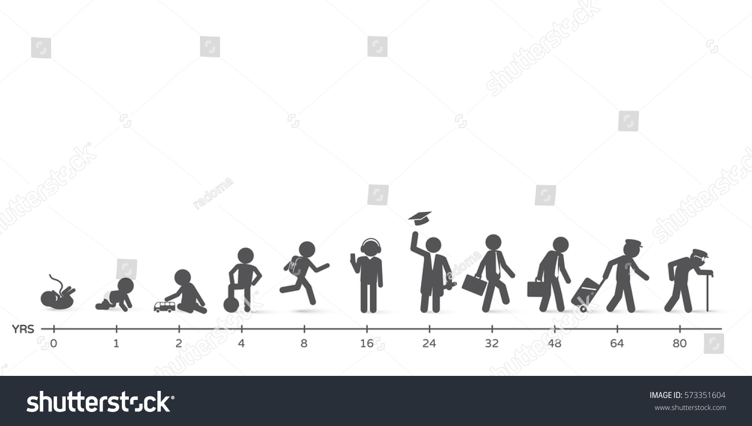 Human life cycle stages ages - photo#39