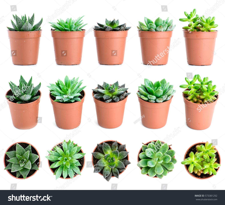 Indoor Plant Pots U0026 Hanging Planters U2013 IKEA