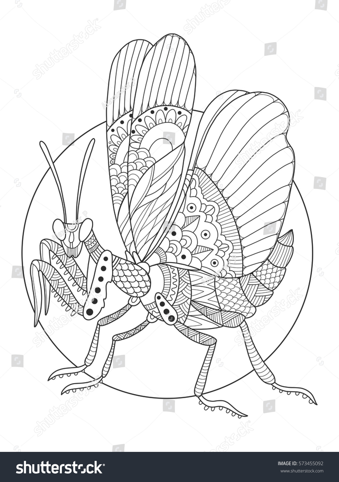 Mantis Insect Coloring Book Vector Illustration Stock Vector ...