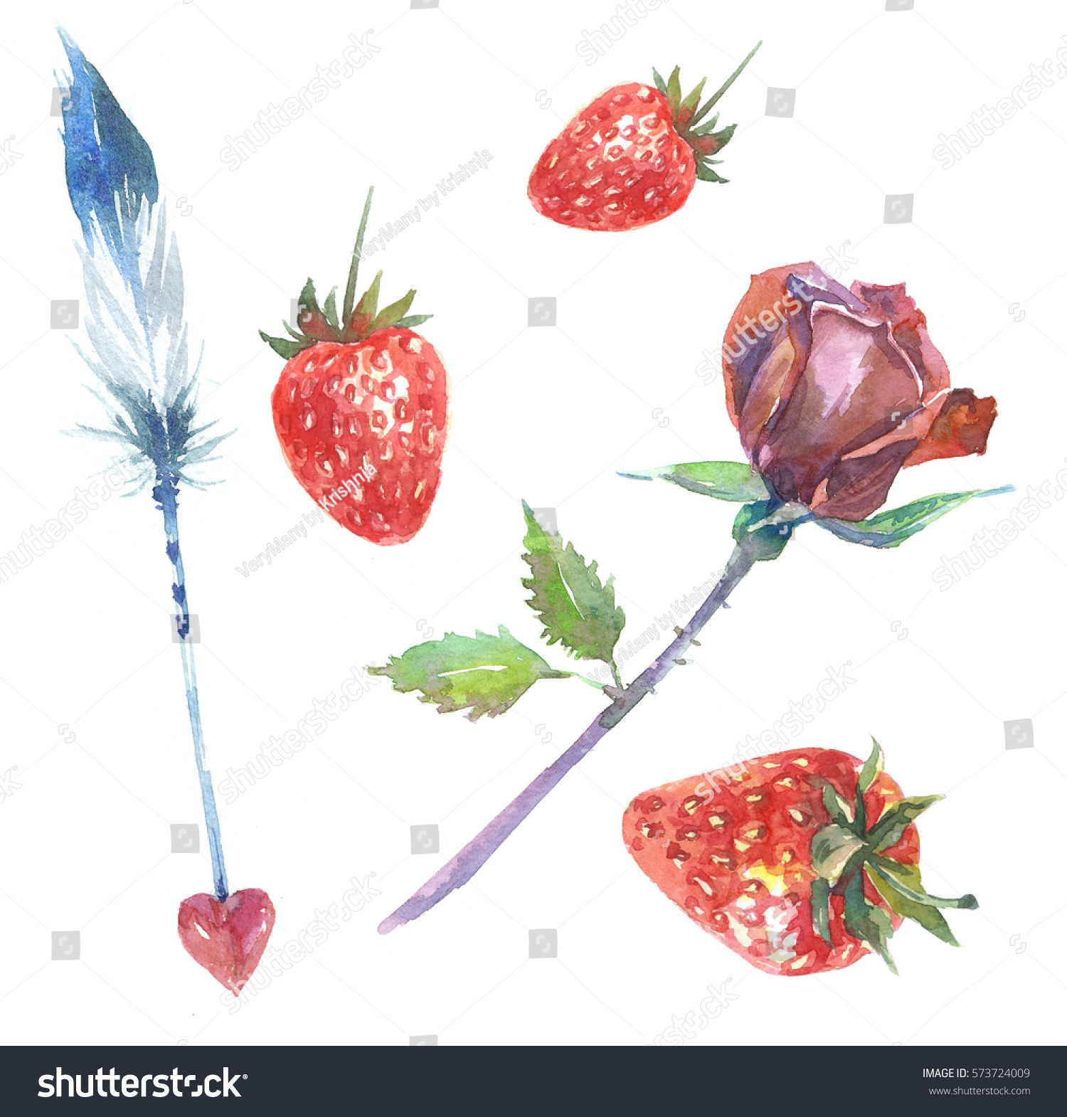 Set love symbols strawberries red rose stock illustration set of love symbols strawberries red rose beautiful feather with heart watercolor biocorpaavc