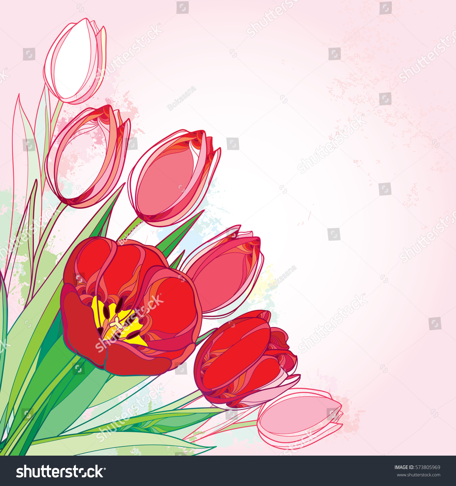 Vector Bouquet Outline Red Tulips Flowers Stock Vector Royalty Free