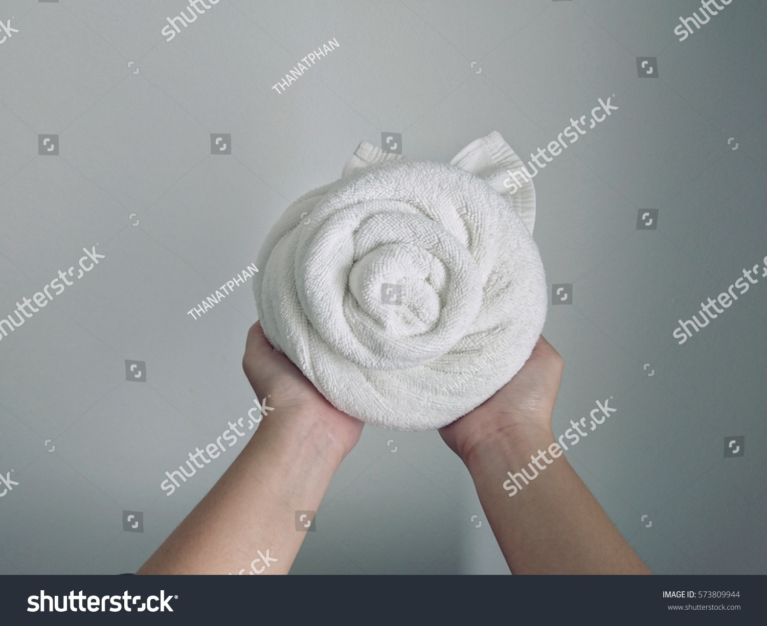 Two Hand Hold White Rose Towel Stock Photo Edit Now 573809944