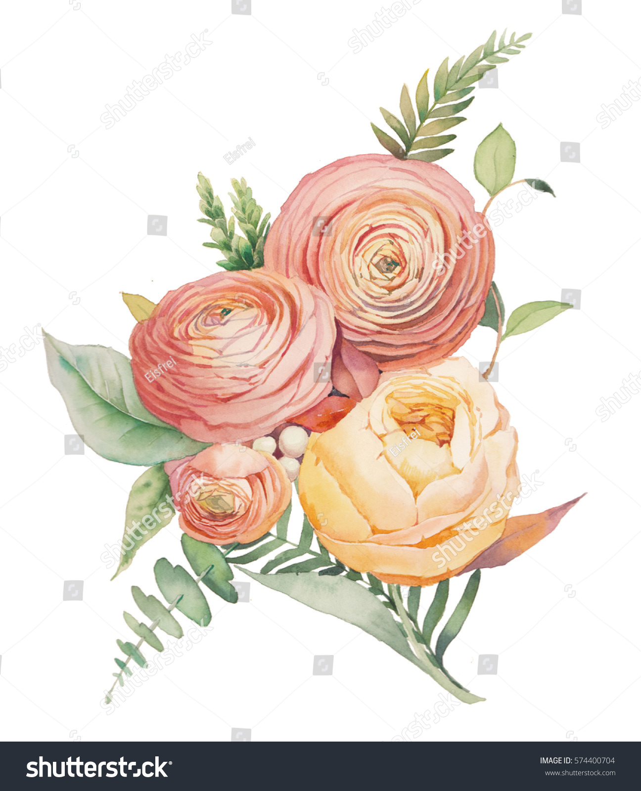 Watercolor Flowers Bouquet Hand Painted Botanical Stock Illustration ...