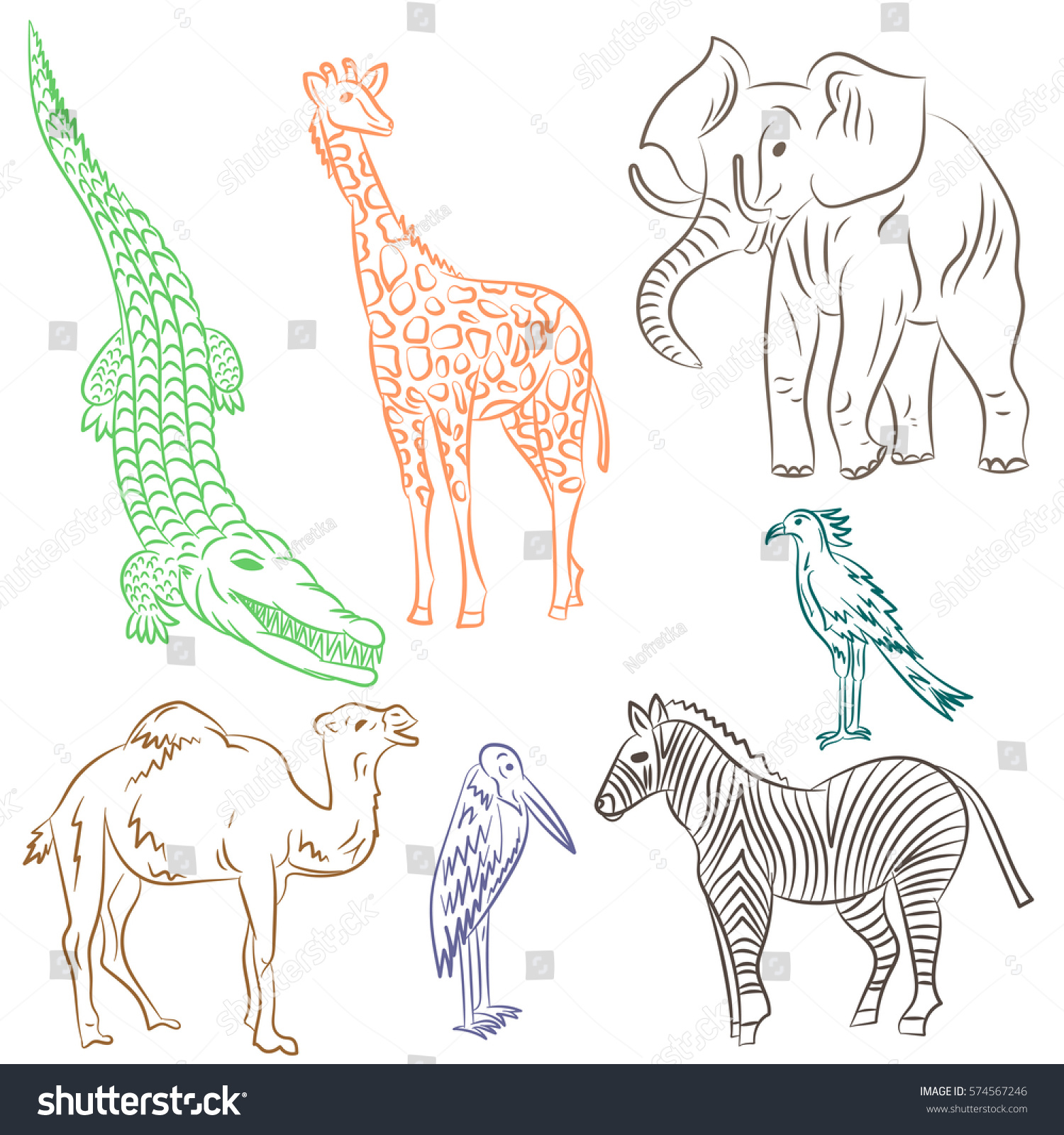 colorful hand drawn african animals birds stock vector 574567246