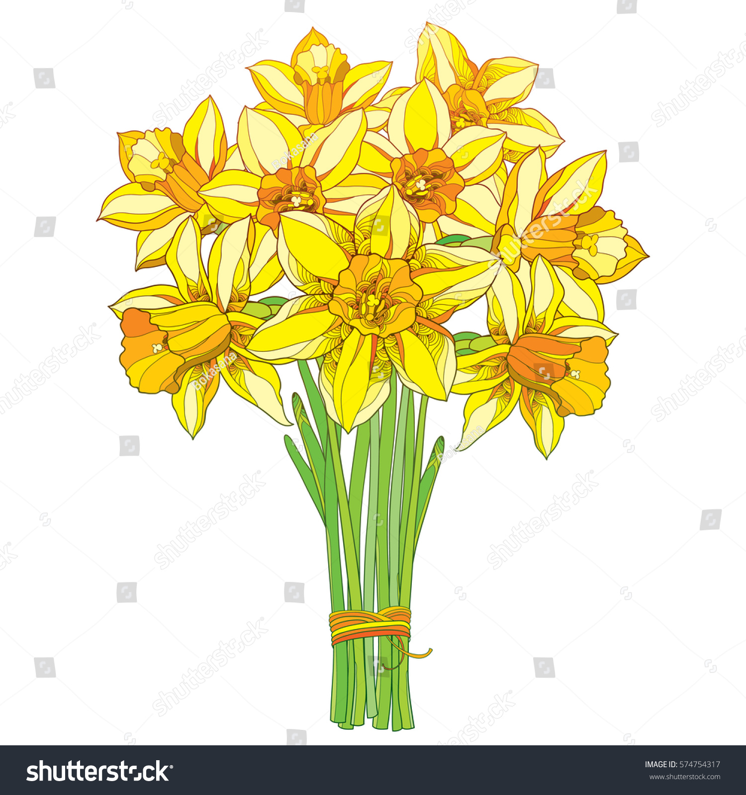 vector bouquet outline yellow narcissus daffodil stock vector