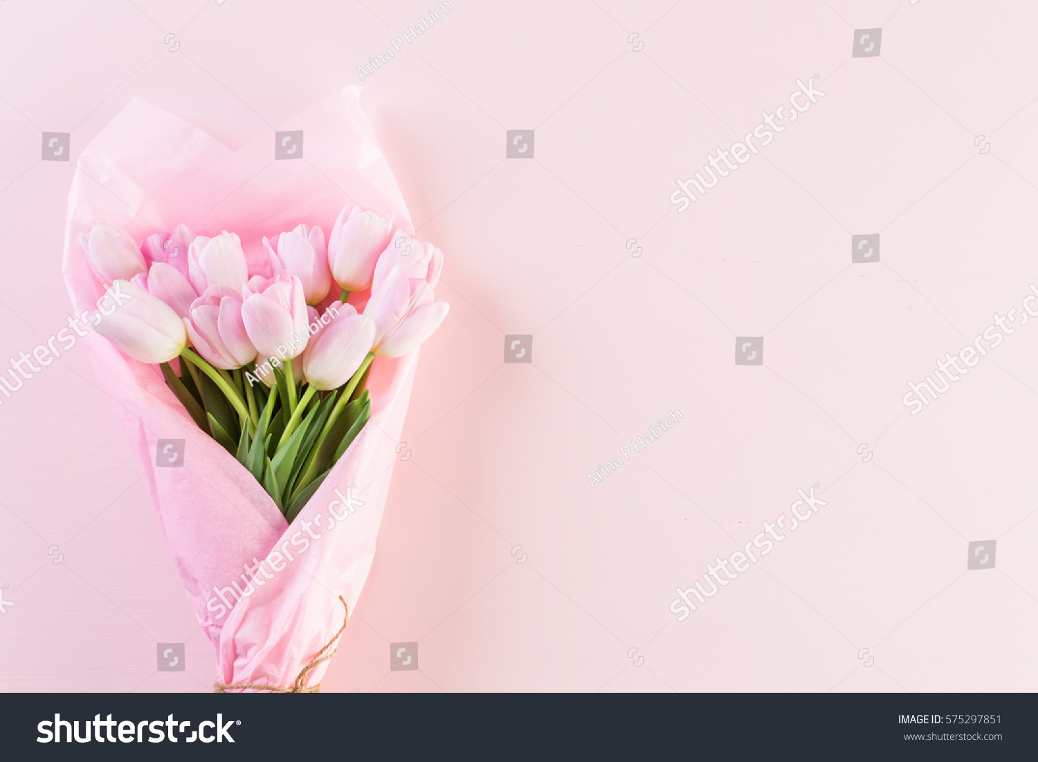 Bouquet of pink tulips wrappen in pink paper.