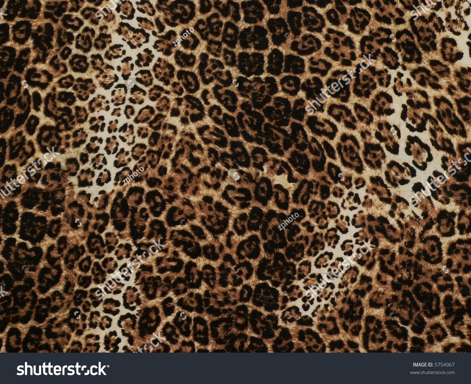 Wild African Animal Skin Texture Stock Photo 5754967 ...