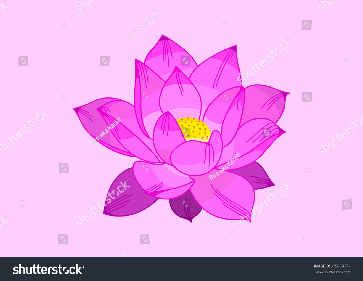 Lotus Flower Vector Pink Yellow Tattoo Stock Vector Royalty Free