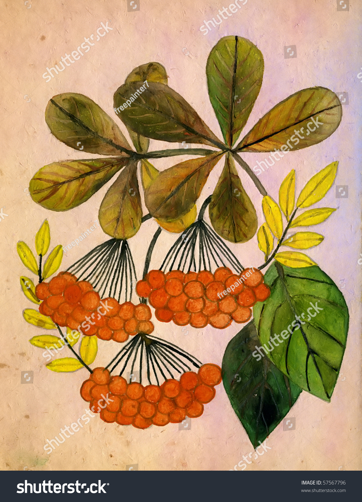 Autumn Leaves Mountain Ash Gouache On Stock Illustration 57567796