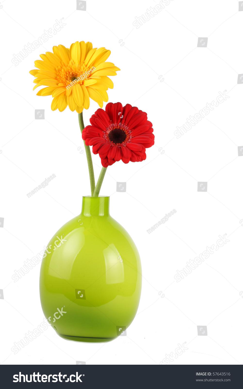Two gerbera daisies vase stock photo 57643516 shutterstock two gerbera daisies in vase reviewsmspy