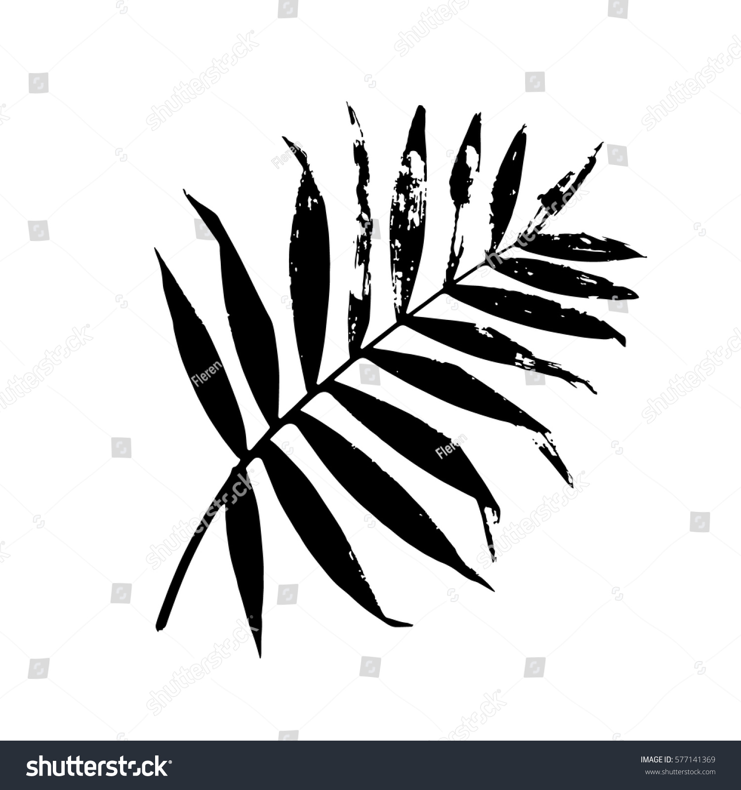 Palm Leaf Vector Illustration Black White Lager-vektor ...