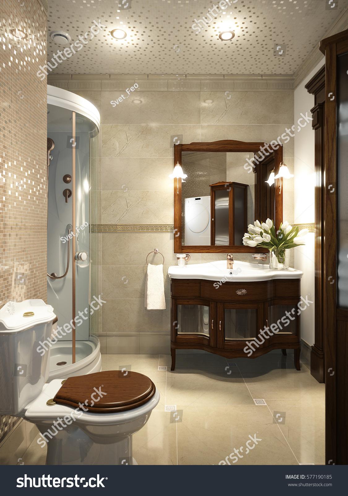 3d Interior Room Design: Bright Classic Traditional Laundry Room Bathroom Stock