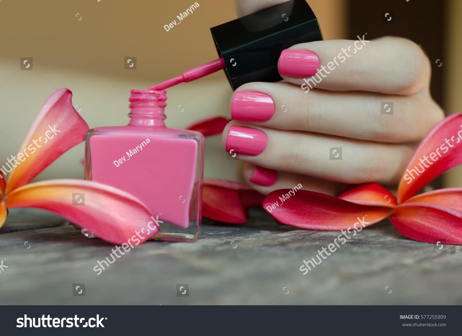 Beautiful female hand pink nail design stock photo 577255909 beautiful female hand with pink nail design pink nail lacquer bottle prinsesfo Image collections