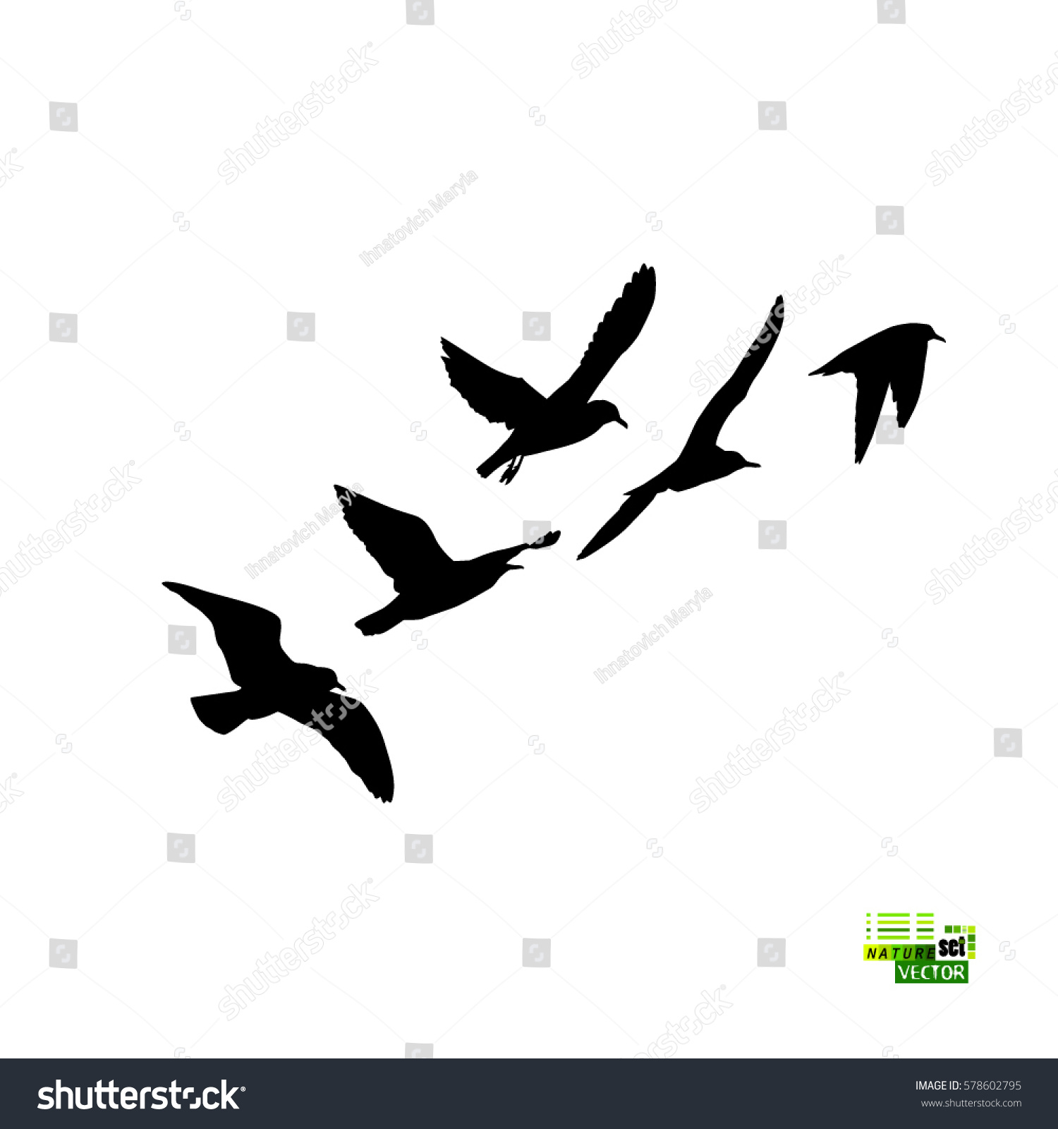 Flock Birds Silhouette Vector 578602795