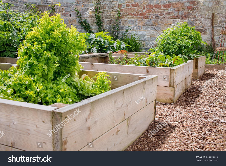 Raised Bed Vegetable U0026 Flower Garden