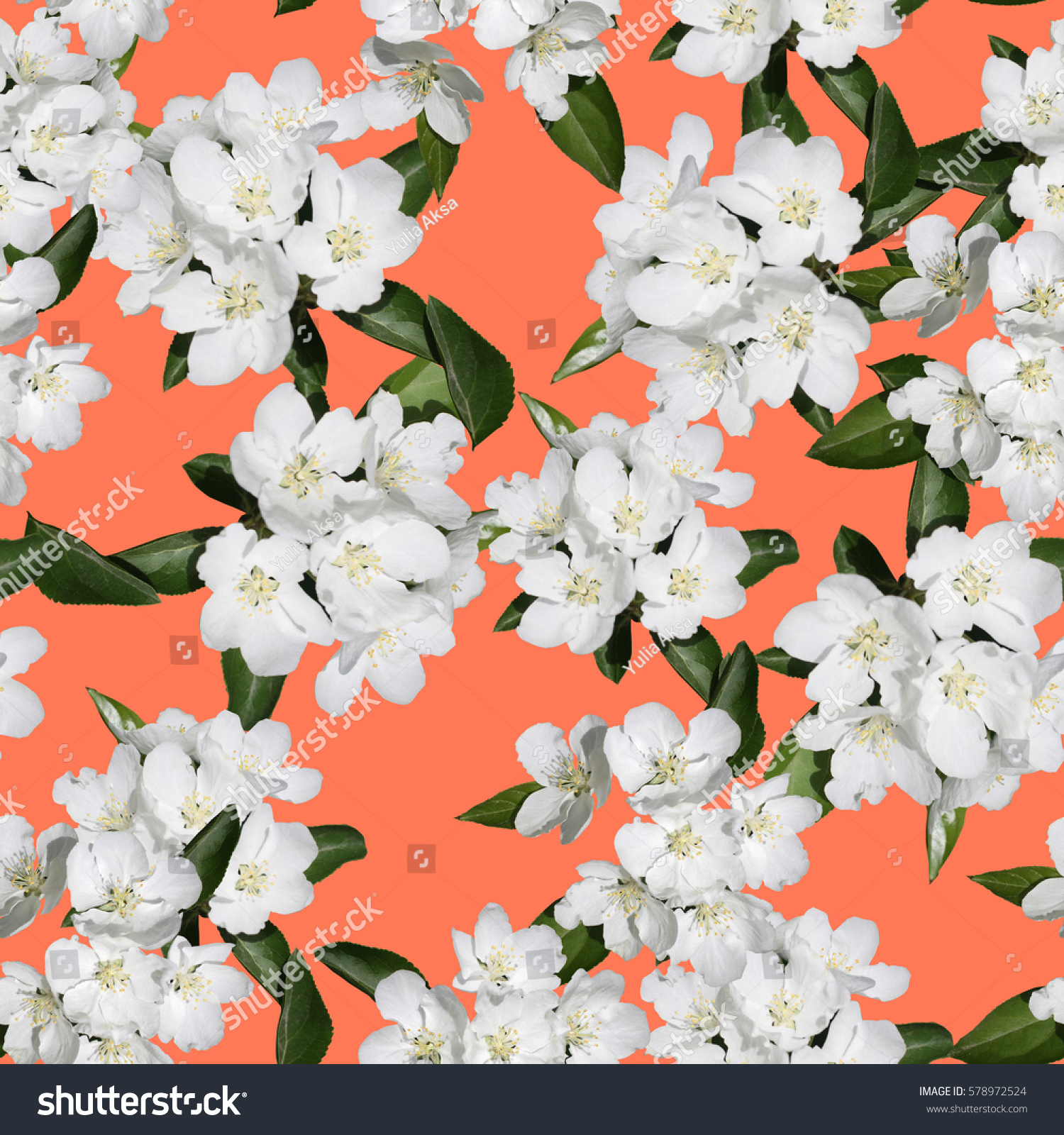Apple blossom branch of flowers cherry on bright color backdrop. Traditional ornate spring flowers sakura pattern seamless. White flower buds on a tree. Sacura collage artistic illustration.