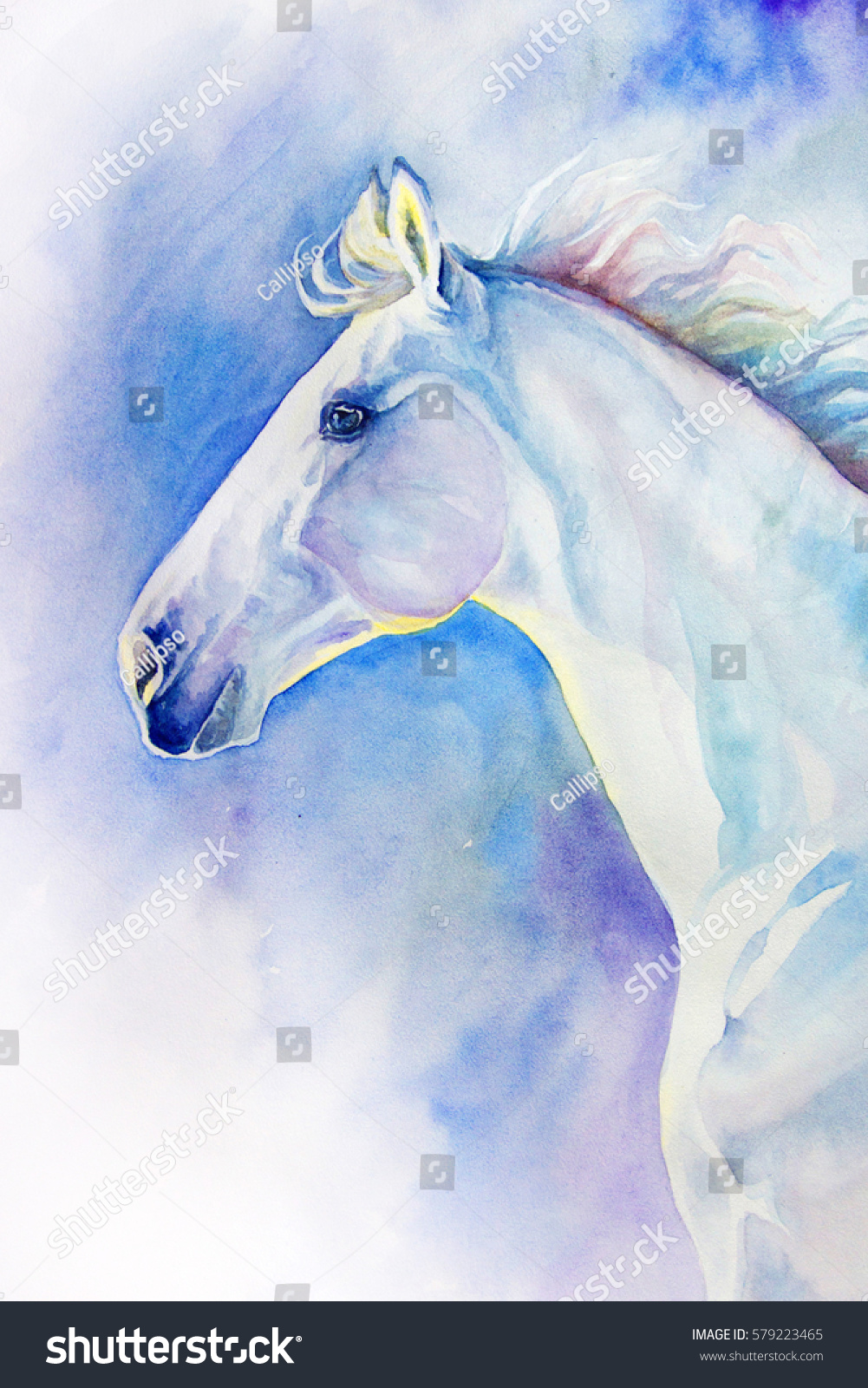 White Horse Portrait Motion Watercolor Drawing Stock Illustration 579223465