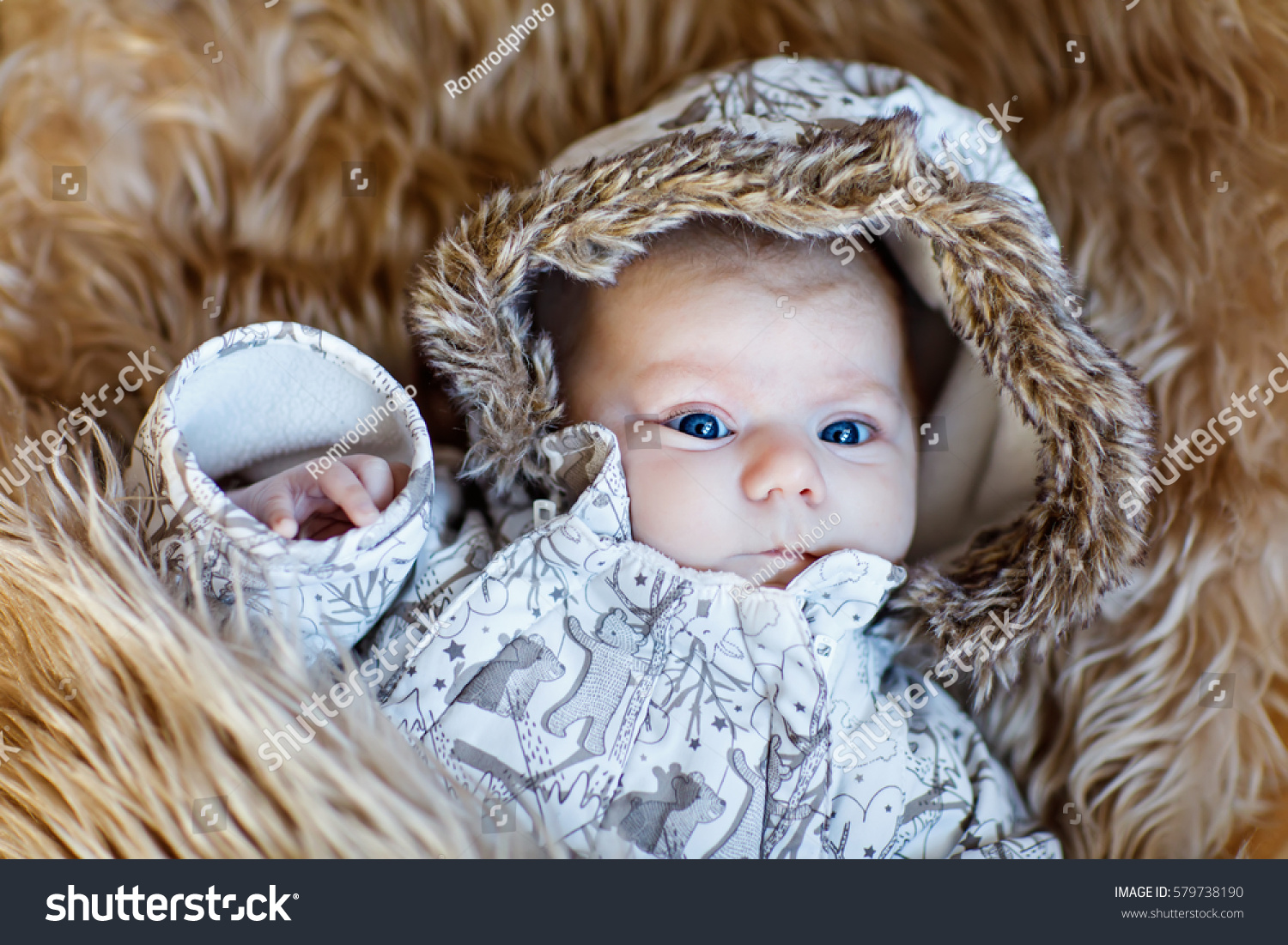 portrait newborn baby warm winter clothes stock photo 579738190 shutterstock. Black Bedroom Furniture Sets. Home Design Ideas