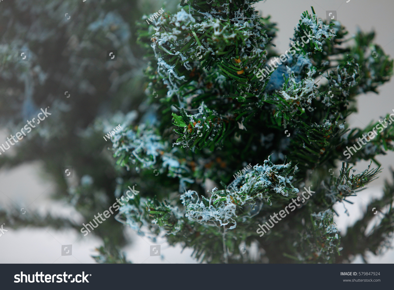Pics Of Christmas Trees