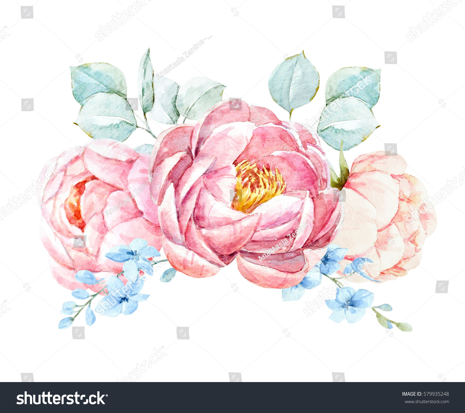 Watercolor Floral Bouquet Pink Peony Flowers Stock Illustration 579935248