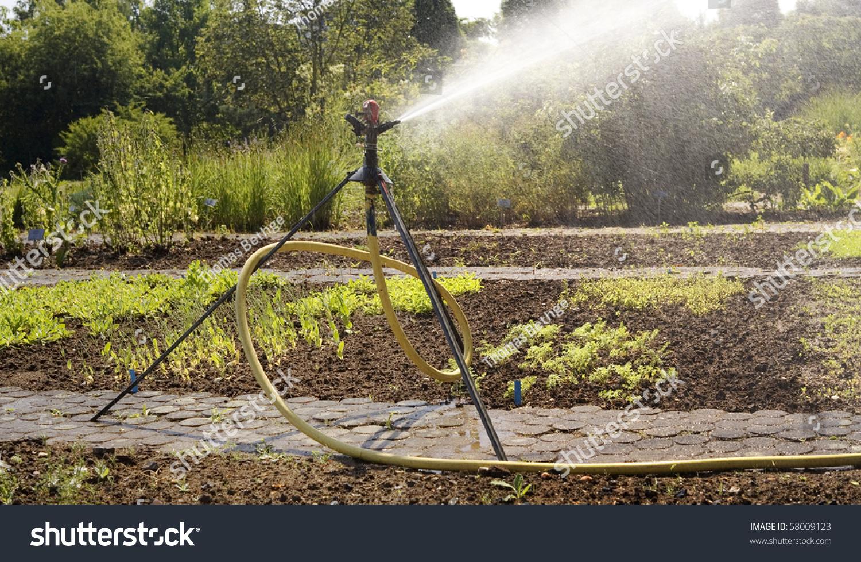 Irrigation System Watering Garden Lawn Sprinkler Stock Photo ...