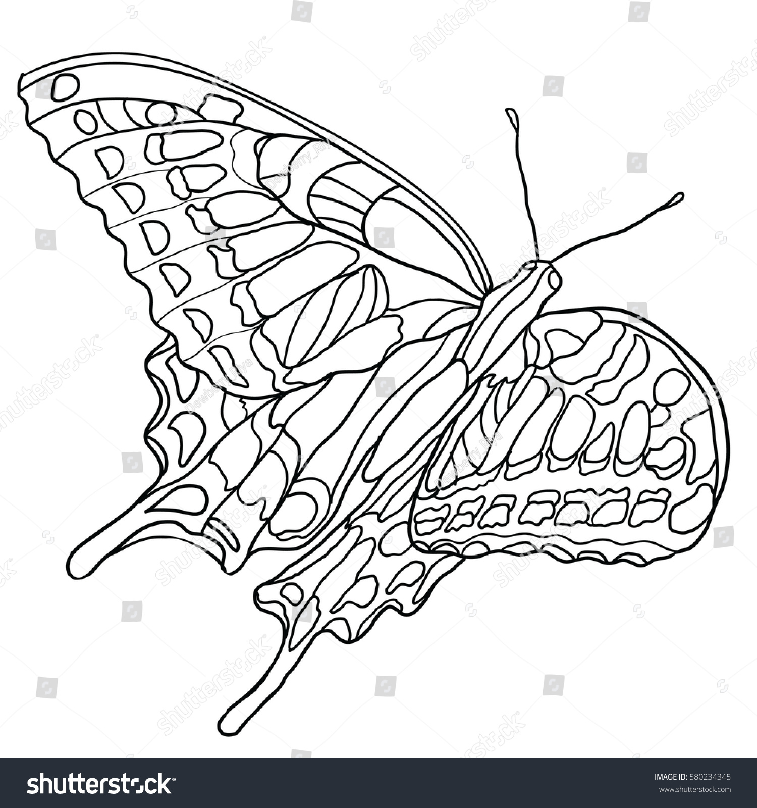 Butterfly Coloring Book Adult Older Children Stock Vector