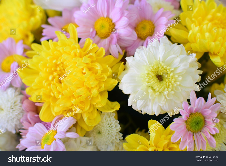 Beautiful Flower Bucket Stock Photo 580318438 - Shutterstock