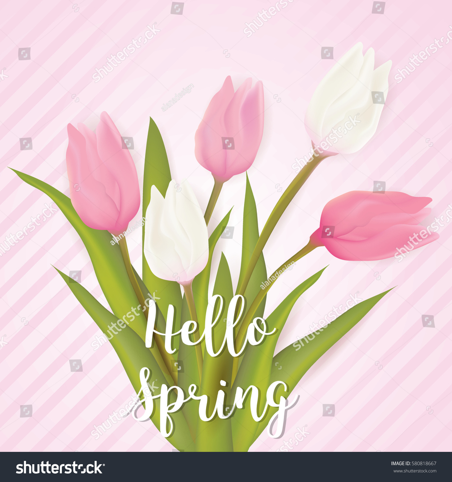 Hello Spring Card Tulip Flowers Typography Stock Vector 580818667