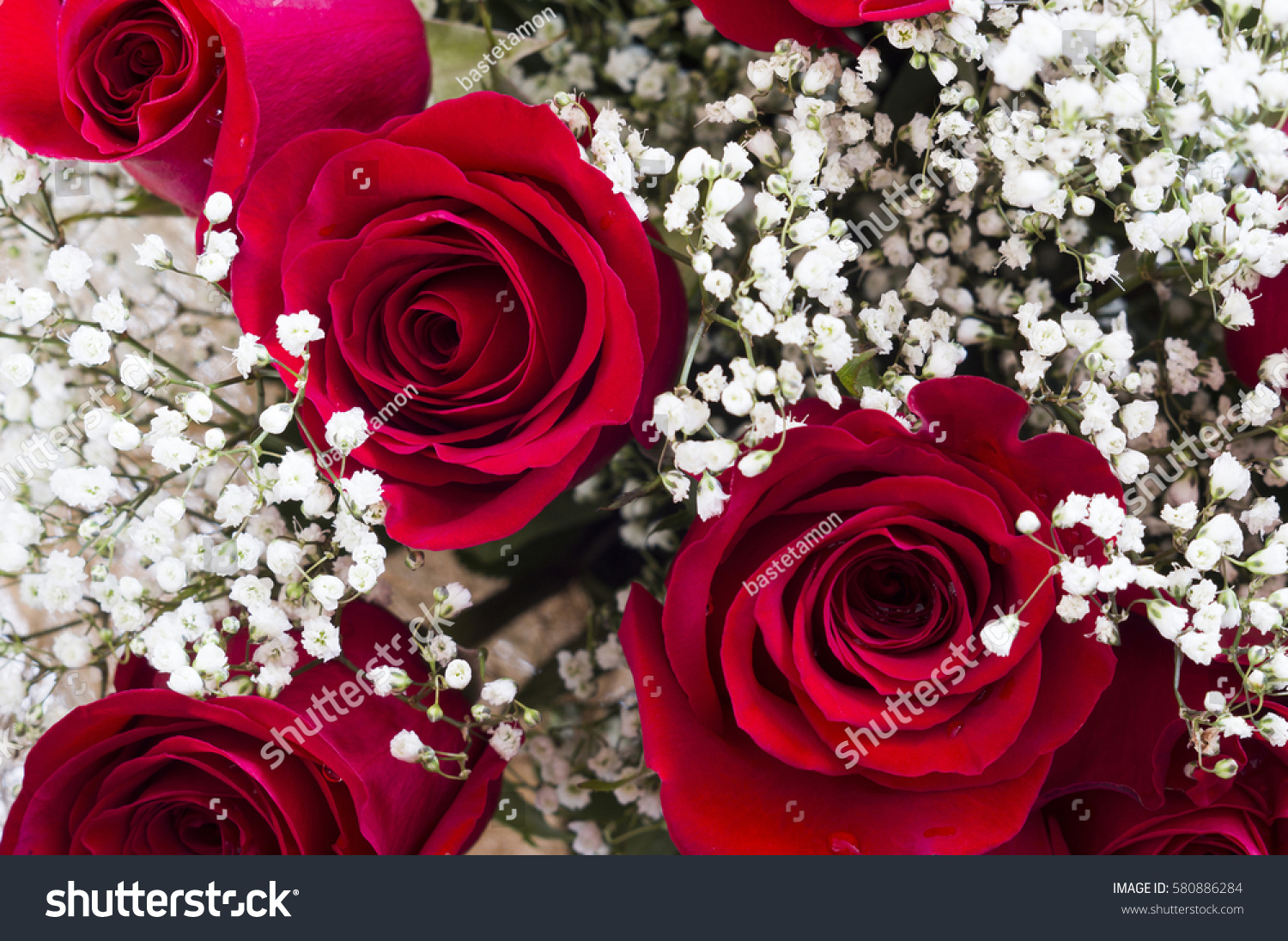 Bouquet Beautiful Red Roses Tiny White Stock Photo Edit Now