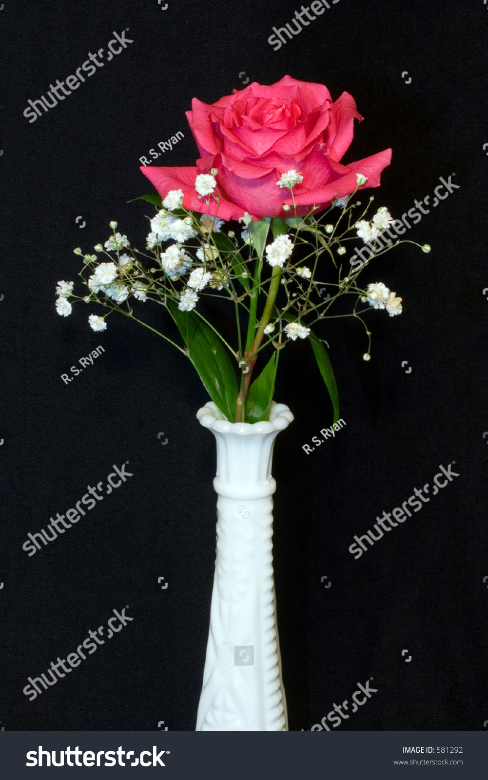 Single Pink Rose In A Vase
