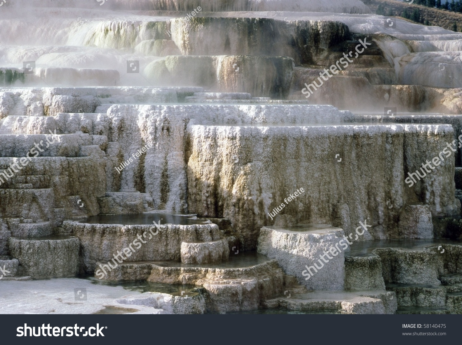 Minerva terrace at mammoth hot springs in yellowstone for Minerva terrace yellowstone