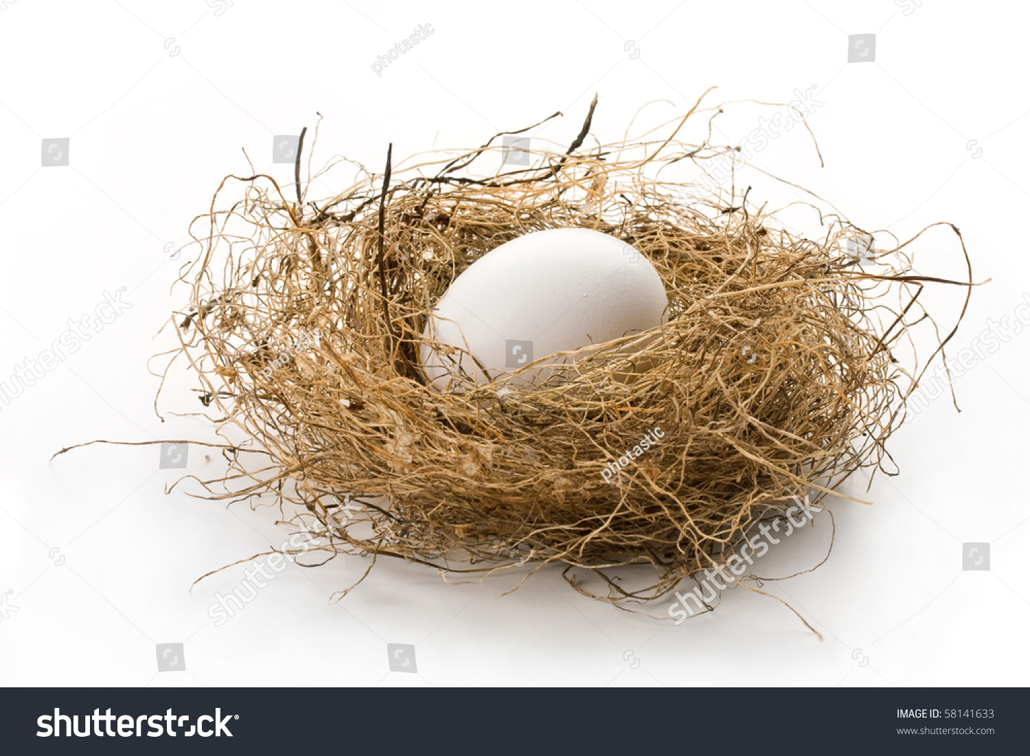 Close up of white egg laying in bird nest on white background with