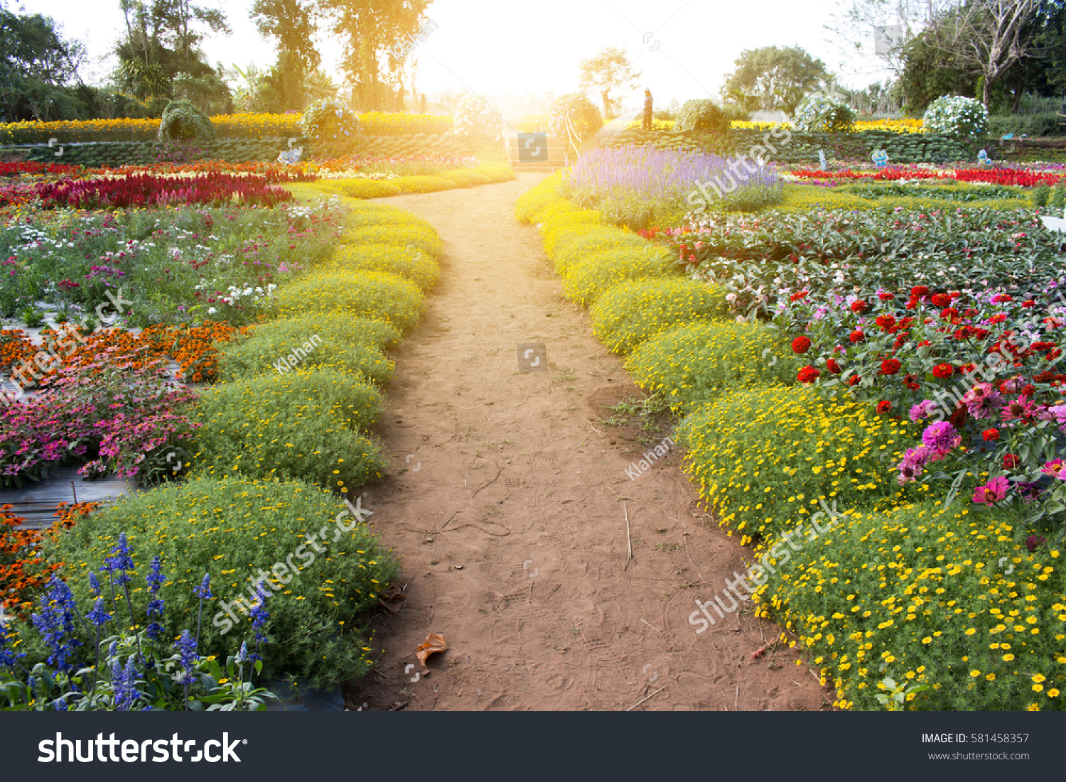 Landscape beautiful flower field stock photo royalty free landscape beautiful flower field stock photo royalty free 581458357 shutterstock izmirmasajfo
