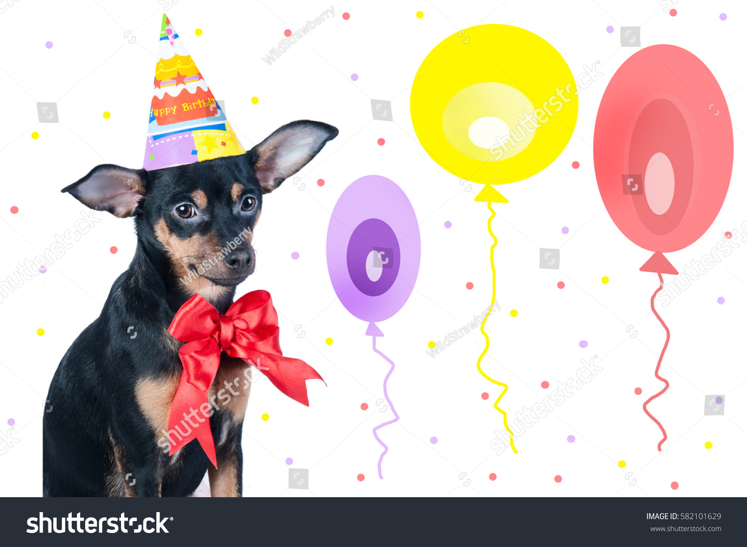 Dog birthday greetings toy terrier hat stock photo 582101629 dog birthday greetings toy terrier in hat and bow kristyandbryce Choice Image