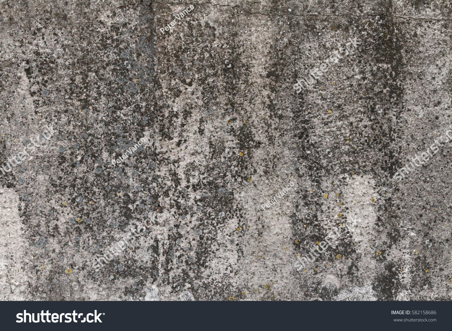 Old concrete wall moss on texture stock photo 582158686 for Old concrete wall texture